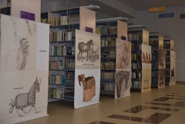 Zdjęcia z galerii Koń jaki jest... - wystawa w Gminnej Bibliotece Publicznej w Oleśnie