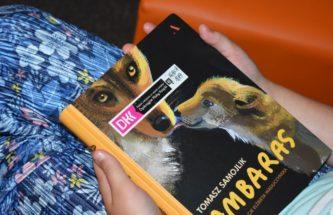 """Zdjęcie do wpisu """"Ambaras"""", czyli niezbyt wilczy wilk na spotkaniu DKK dla dzieci"""